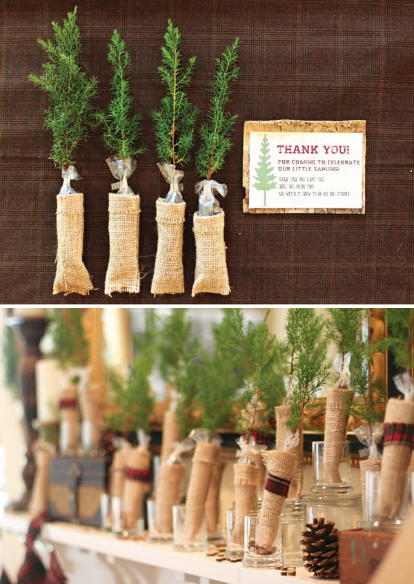 red cedar sapling party favors and thank you card