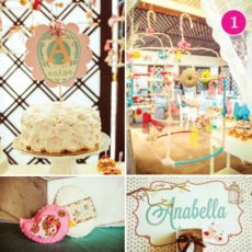 shabby chic bird and birdcage themed baby shower