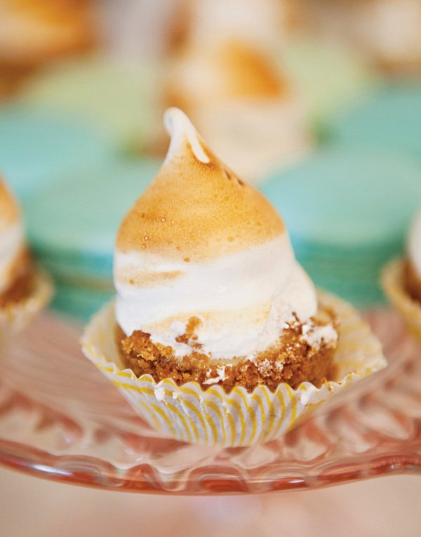toasted meringue party dessert