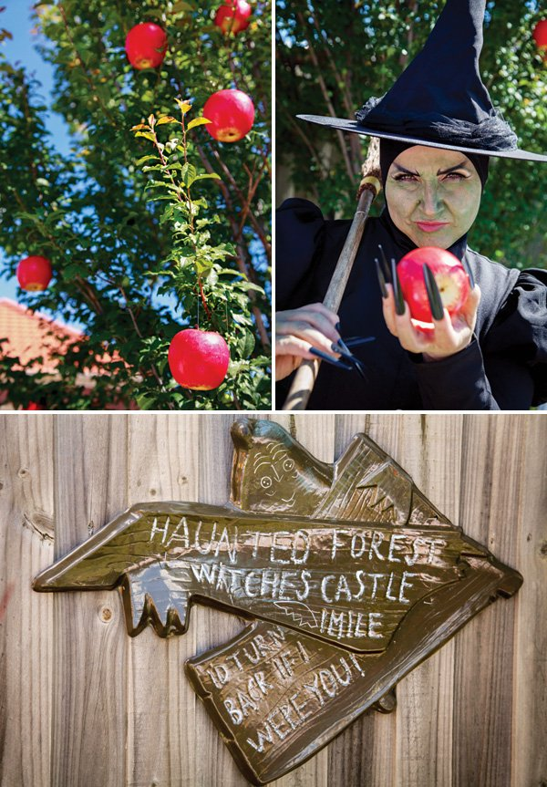 wicked witch adult party costume
