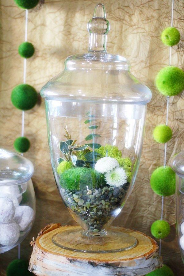apothecary-jar-terranium
