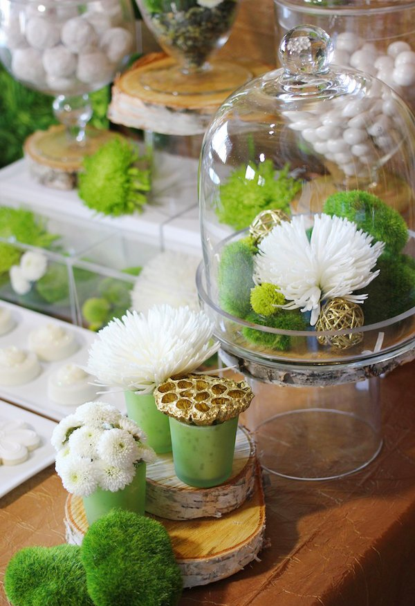 garden-wedding-terraniums