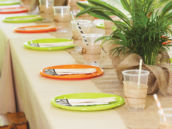 safari tablescape party decor