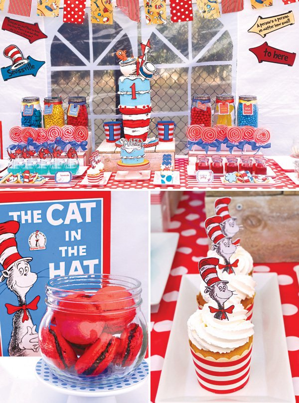 cat in the hat first birthday party ideas