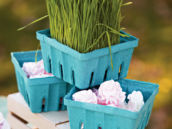 wheat grass baskets filled with meringues