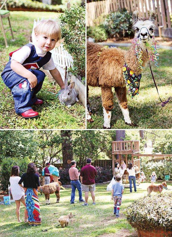 backyard birthday party petting zoo