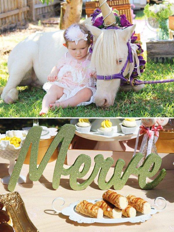 birthday party horse unicorn