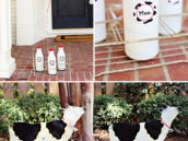 milk bottles for a farm party's decorations
