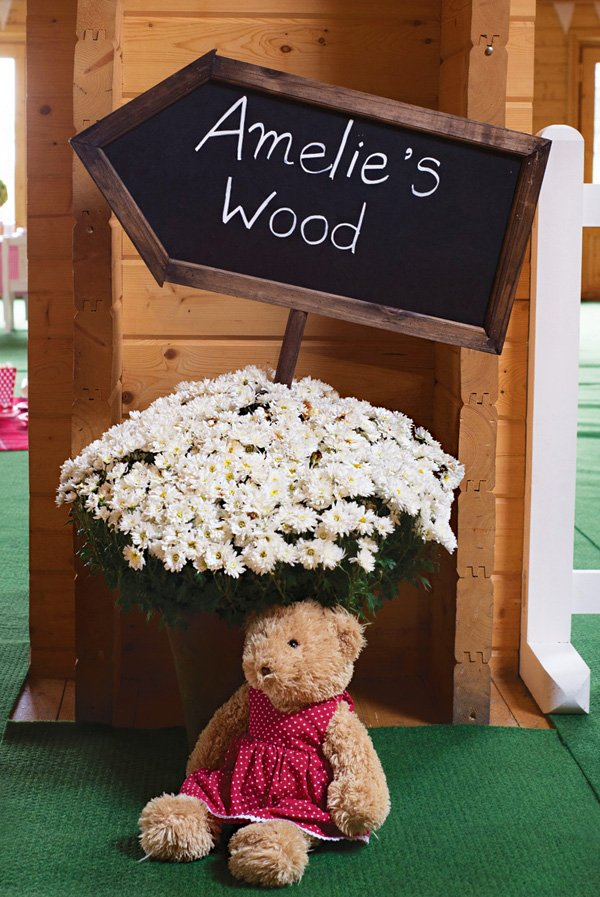 teddy bear woodland birthday party sign