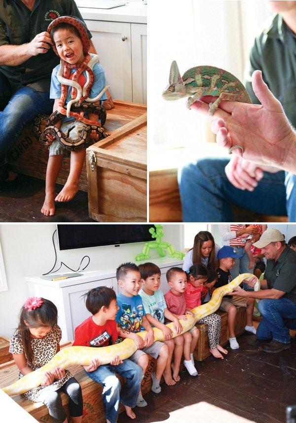 birthday party wild animals reptiles show