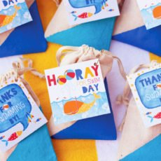 color blocked muslin favor bags