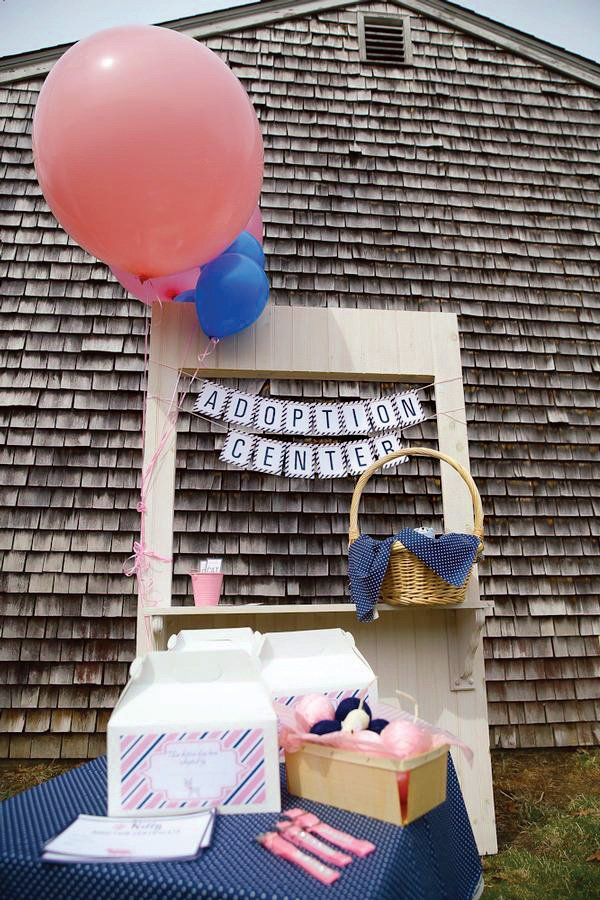 birthday party cat adoption