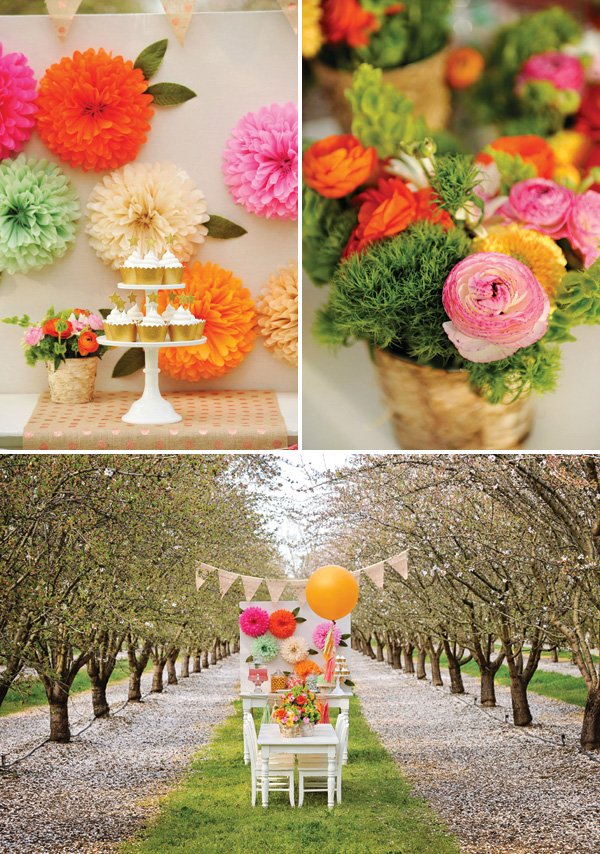 tree orchard birthday party venue