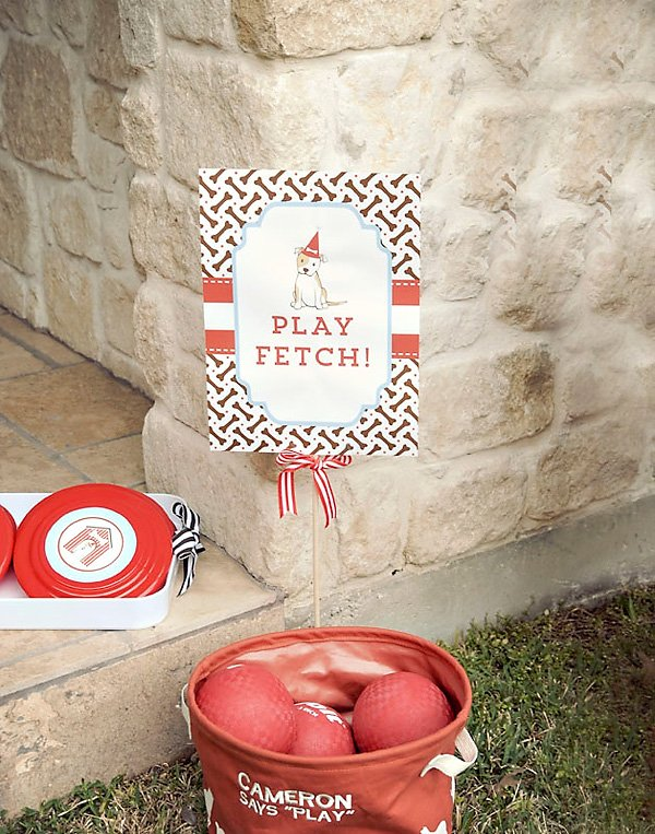 play fetch party game with frisbees and balls
