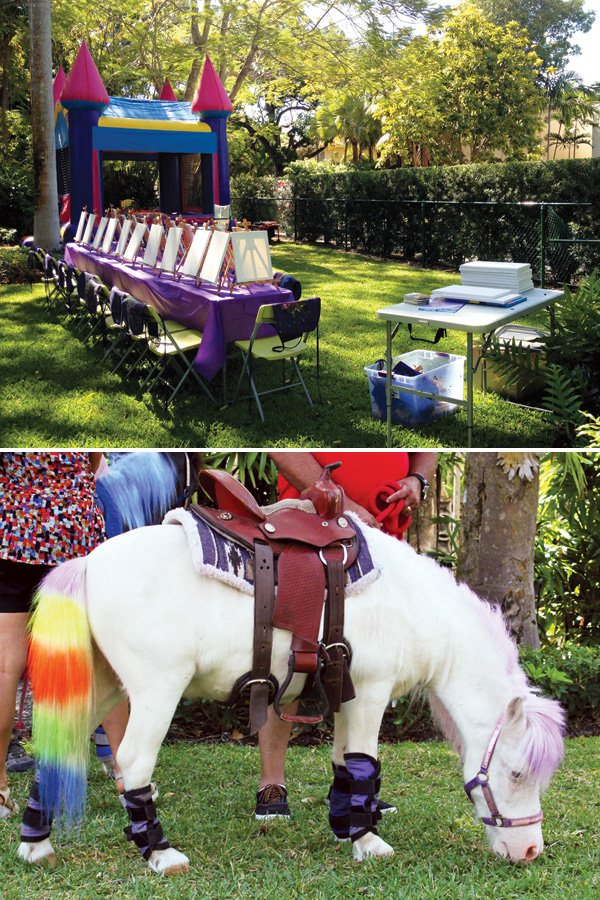 princess party rainbow pony rised and princess castle bounce house