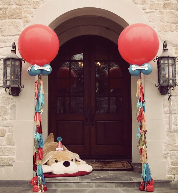 puppy dog party entrance