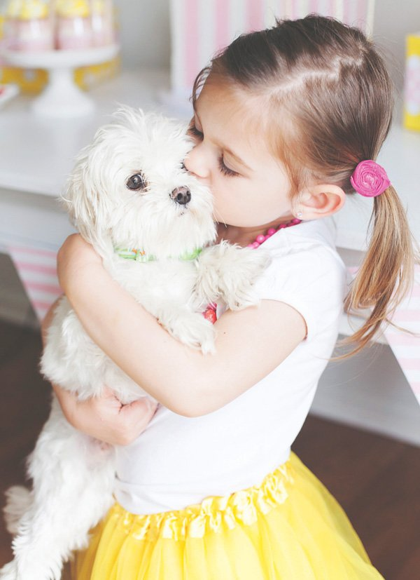 a girl and her little white dog