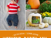 DIY halloween party costumes and pumpkin ideas
