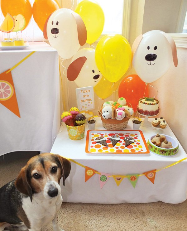 puppy dog birthday party on a budget