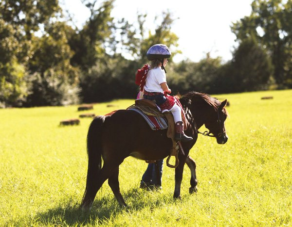 cowgirl party pony rides