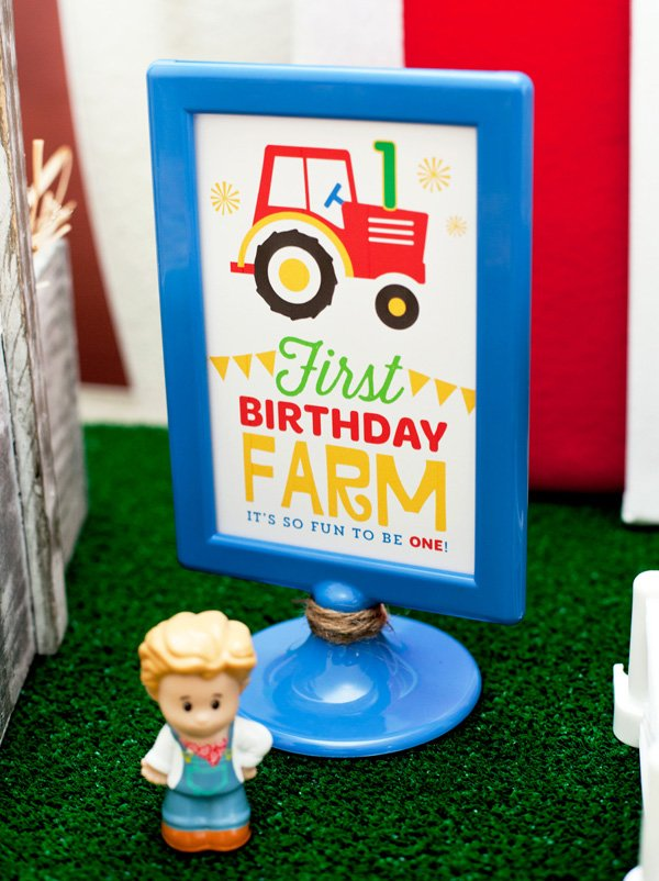 farm first birthday decorations