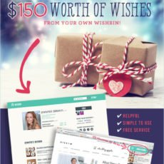 WishBin Giveaway