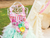Shabby Feather Tutu Dress