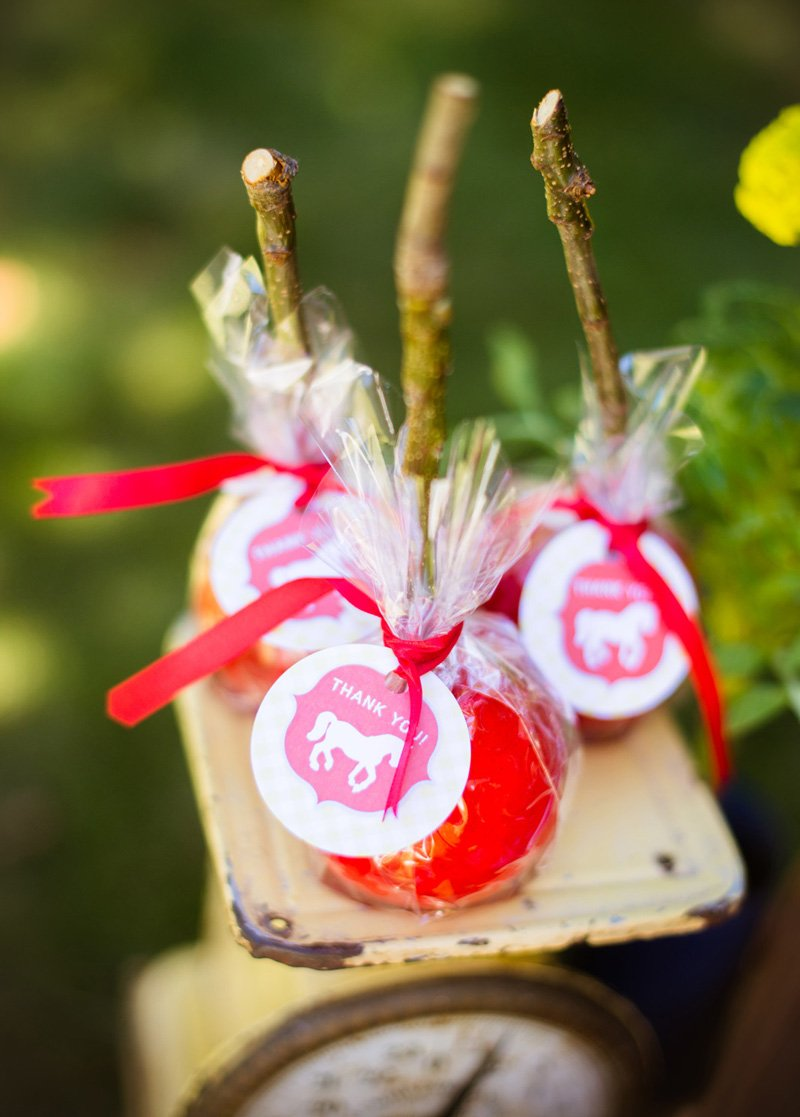 candy apples with twig sticks