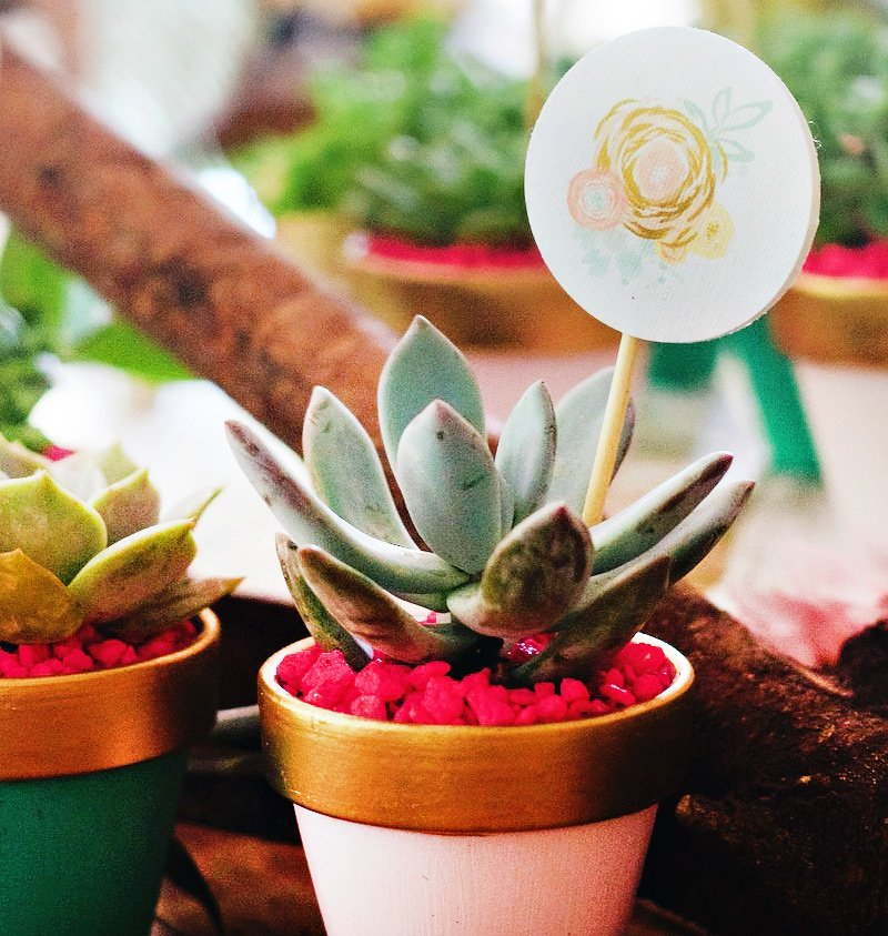 boho chic cactus party favor