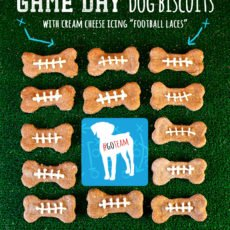 Football Game Day Dog Biscuits Recipe
