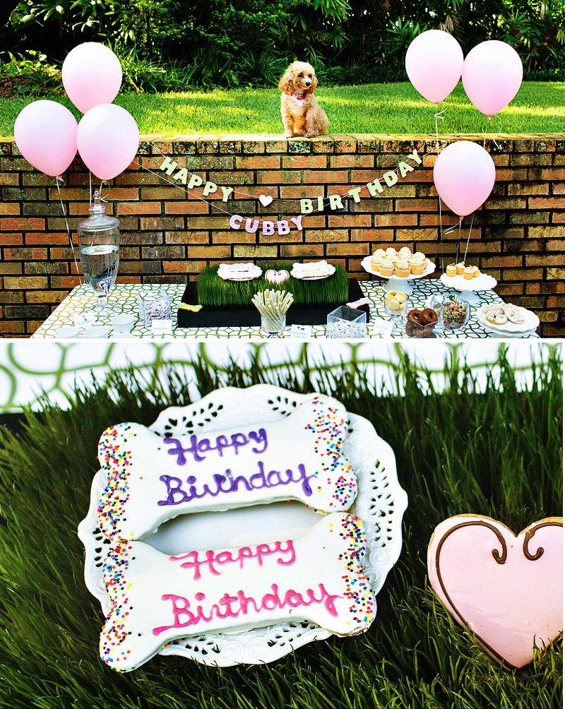 dog birthday party ideas