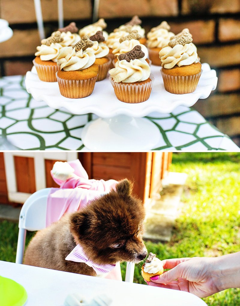 dog birthday party ideas