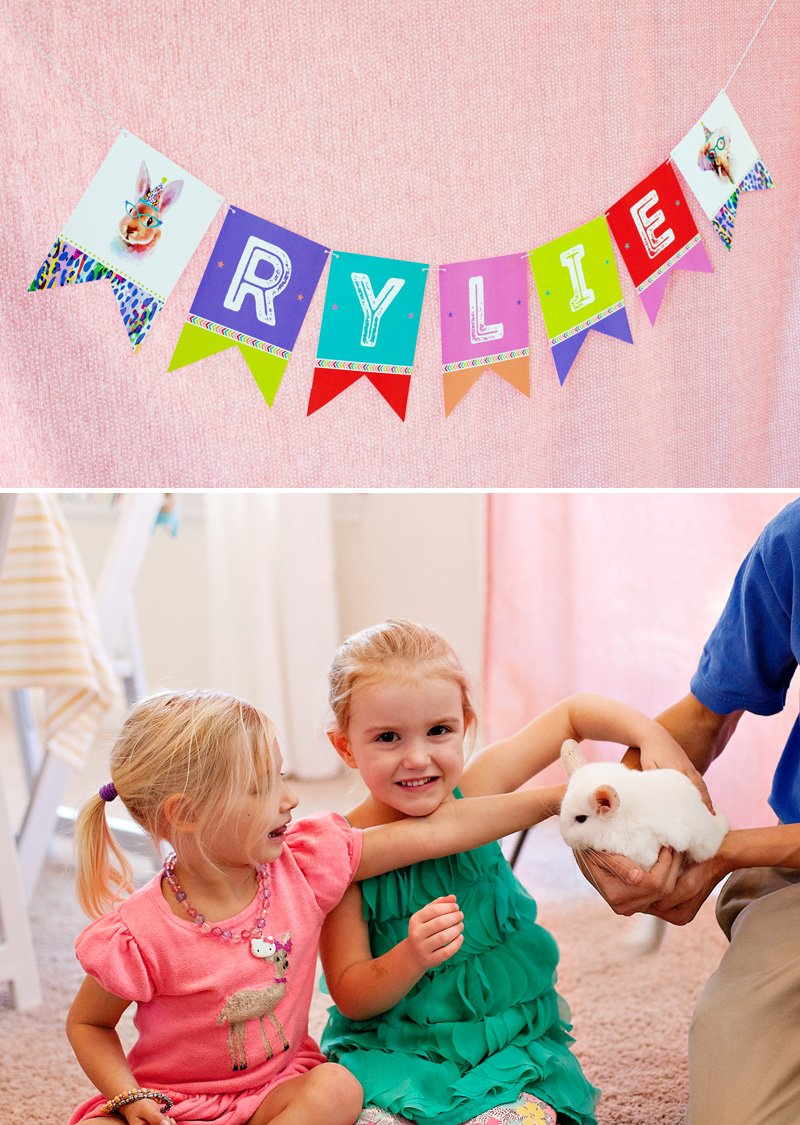 Party Animal Birthday Banner and Chinchilla