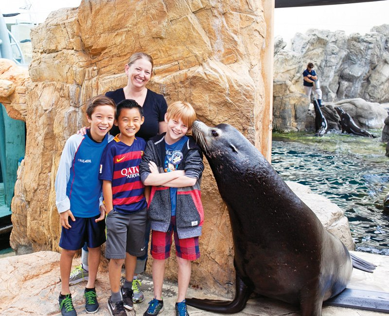 marine mammal aquarium brithday party