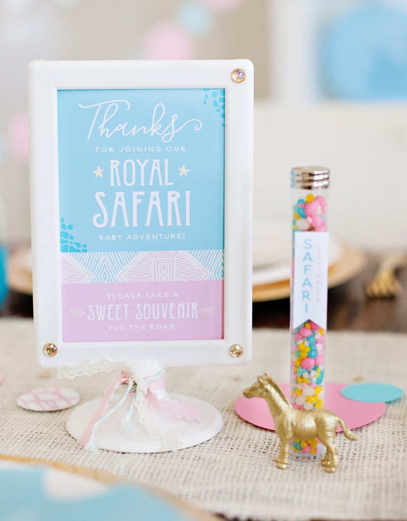 Safari Party Favors and Printable Sign