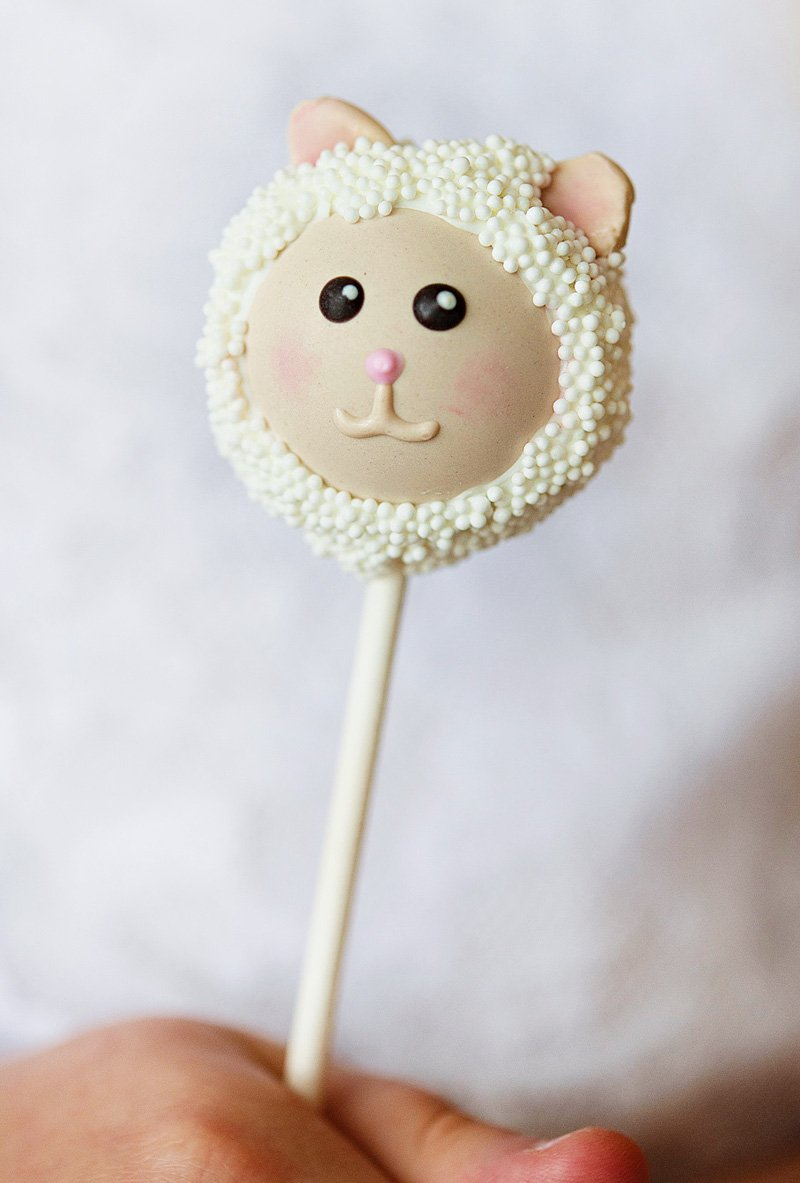 lamb or sheep cake pops