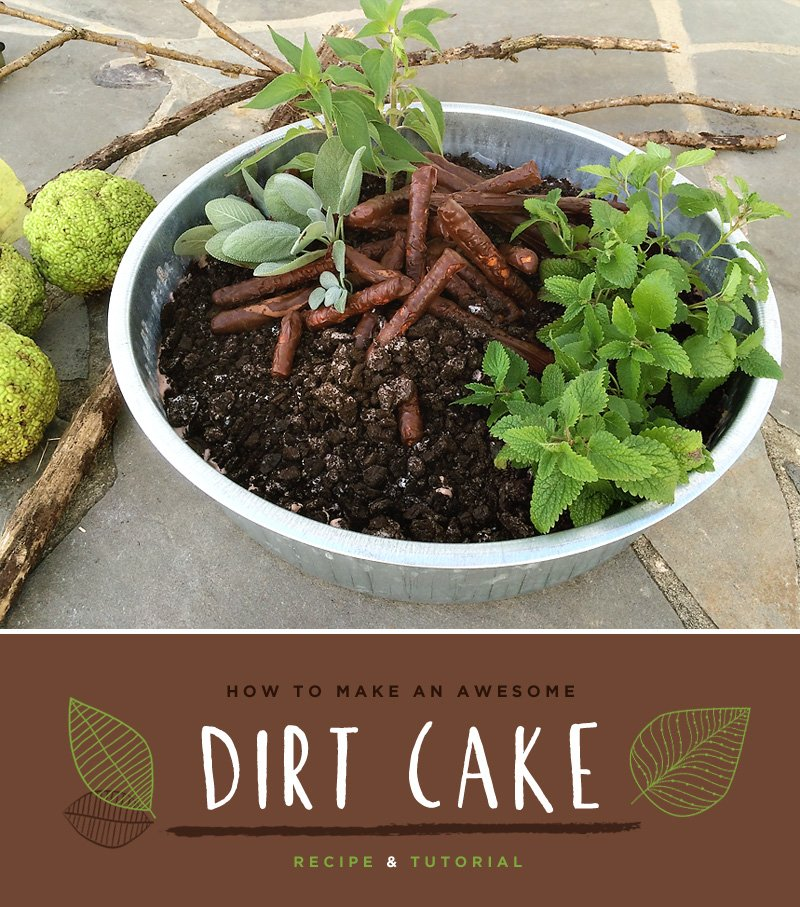 Dirt Cake Recipe and Tutorial