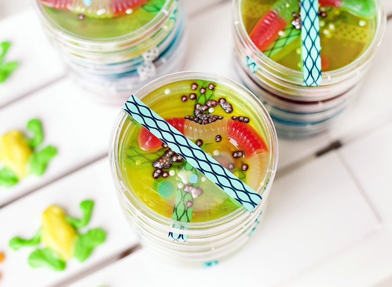 petri dish jello science party treat