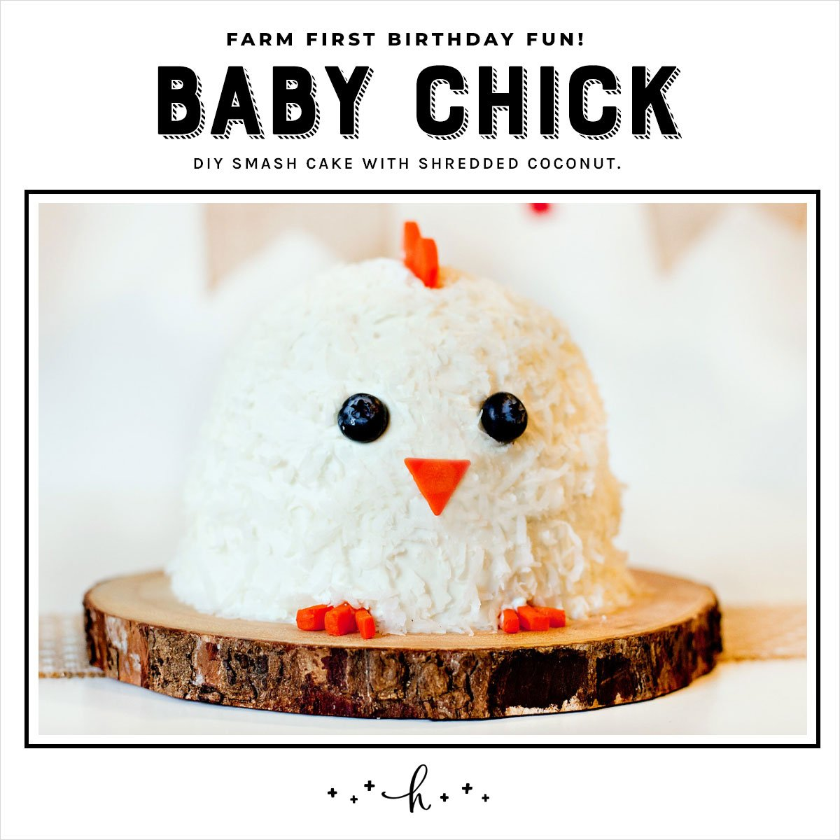 Farm Party Smash Cake - Baby Chick