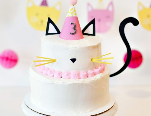 7 Modern Kitty Cat Birthday Party Ideas
