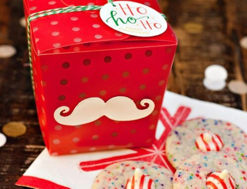 Make it! Mod Santa Takeout Boxes