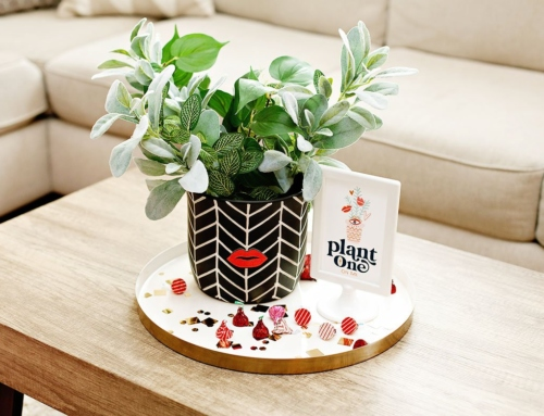 Valentine's Day Centerpiece: Plant One On Me!