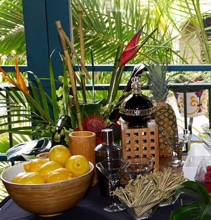 tropical zen party ideas